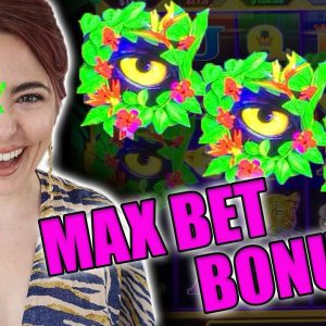 The BEST JUNGLE CATS Game in Las Vegas! Max BET BONUS!