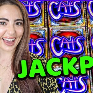 FIRST HANDPAY on Cats Slot Machine in over 3 years!