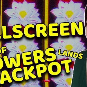Near FULLSCREEN SAVES the DAY with A BIG JACKPOT HANDPAY on PANDA MAGIC!