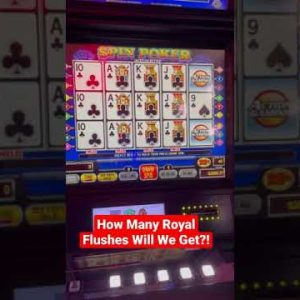4 to the royal on 3 different #videopoker games. how many do we get?!