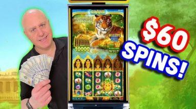 🛕 Big Bets = Big Jackpots on Golden Jungle 🐅 $60 Max Bet Slot Wins!